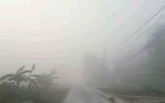 Kabut Asap Sebabkan Jarak Pandang di Sampit hanya 100 Meter