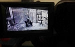 Curi Lampu Hias Terekam CCTV di Pangkalan Bun