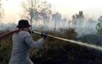 Legislator Kotawaringin Timur Apresiasi Penindakan Hukum Terhadap Pembakar Lahan