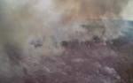 Belum Terlihat Perubahan Penanggulangan Karhutla di Kalimantan Tengah