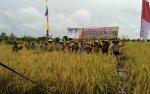 DKPP Sukamara Diminta Tingkatkan Sosialiasi Pemanfaatan Alat Berat untuk Buka Lahan Pertanian