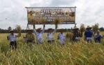 Kepala Dinas Pertanian Kapuas Harapkan Kelompok Tani Sari Mulya Mampu Berswadaya