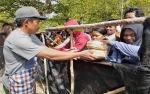 Musala Nur Hidayah Siapkan 1.000 Besek untuk Pembagian Daging Kurban