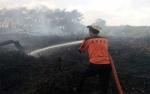 BPBD Kapuas Siaga Padamkan Kebakaran Hutan dan Lahan