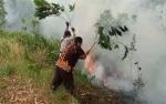 Lahan Terbakar di Kotawaringin Timur Capai 150 Hektare
