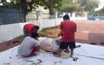 PWI Kalimantan Tengah Berbagi Daging Kurban di Hari Idul Adha