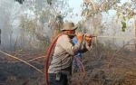 Perkebunan Harus Ikut Tekan Kebakaran Hutan dan Lahan