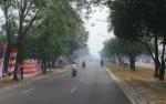 Lahan Terbakar di Palangka Raya Capai 1.000 Hektare