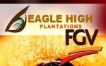 Hadapi Gejolak Harga CPO, Eagle High Plantations Fokus Efisiensi