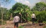Polres Sukamara bakal Tindak Tegas Pembakar Lahan