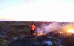 Pemkab Sukamara Bentuk Masyarakat Peduli Api di 11 Desa Rawan Karhutla