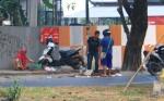 BKSDA Kalteng Tunggu Surat Resmi Hukum Distribusi Bajakah