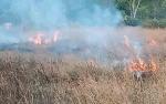 Polres Pulang Pisau Ungkap 5 Perkara Pembakaran Lahan Dalam Tiga Hari