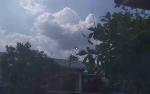 Pascaturun Hujan, Waspadai Pembiakan Nyamuk DBD