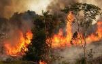Selama Agustus 2019 Terdata 106 Titik Api di Barito Timur