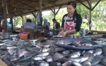 Pedagang Ikan di Pasar Keramat Direlokasi ke Kawasan PT Inhutani