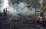 Kebakaran Lahan di Kumai Dekati Permukiman Warga