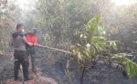 Tim Gabungan Terus Padamkan Kebakaran Lahan di Kasongan