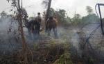 Polres Kotim Selidiki Kebakaran Lahan di Jalan MT Haryono Barat