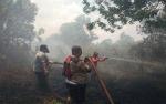 Kapolres Kotawaringin Timur Ikut Padamkan Kebakaran Lahan di Jalan MT Haryono Barat