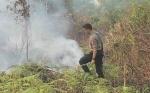 Kapolres Kotim dan Ajudan Spontan Lakukan Pemadaman saat Lihat Kebakaran Lahan