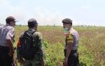 Kebakaran Hutan dan Lahan di Kecamatan Jelai Banyak Tidak Tertangani