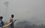 Pusdalops: 9 Bulan, Lahan Terbakar di Kalimantan Tengah Capai 6025 Hektare