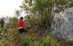 DPRD Kotawaringin Timur Dukung Langkah Tegas Terhadap Pembakar Lahan