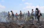 Sekda Sukamara Suarakan Cara Atasi Kebakaran Hutan dan Lahan