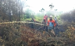 Camat Cempaga Pimpin Pemadaman Kebakaran Lahan