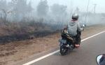 Perempuan Pembakar Lahan Jadi Tersangka Ternyata Tuna Rungu
