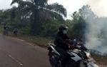 DPRD Desak Pemkab Kotim Kerahkan Perusahaan Atasi Kebakaran Hutan dan Lahan