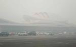 BMKG: Kecepatan Angin di Bawah 20 Km, Kabut Asap Bertahan di Palangka Raya