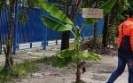 Anggota DPRD Minta Pembangunan Infrastruktur Fokus Membangun Jalan Permukiman