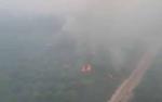 Kebakaran Lahan di Kasongan Hanguskan Kebun Kelapa Sawit