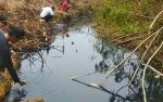 Sungai Mentajai Desa Sumber Jaya Diduga Tercemar Aktivitas Perusahaan
