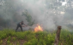 Ini Jumlah Penanganan Kasus Kebakaran Hutan dan Lahan Seluruh Polres Jajaran Polda Kalteng