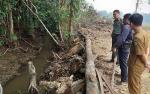 BKSDA akan Pasang Perangkap Buaya di Sungai Cempaga