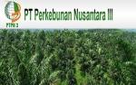 Produk Sawit PTPN III Tembus Pasar Eropa dan AS