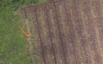 Polres Kobar Selidiki Pembukaan Hutan Produksi Selangkun