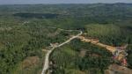 Potensi Ekonomi Kalimantan Tengah Dampak Ibu Kota Baru