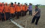 Sambut Musim Tanam Kelompok Tani di Desa Petak Batuah Tambah Tanam Padi