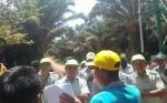 Anggota Komisi I DPRD Menampik Pegang Bola Panas Perizinan Kelapa Sawit di Desa Penyang