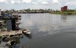 Karhutla Penyebab Air Sungai Jelai Berwarna Hijau Kebiruan