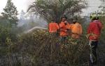 Kabut Asap Muncul Lagi di Kasongan