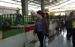 Bupati Kobar: Keluhan Pedagang Pasar Indra Sari Jadi Bahan Evaluasi Perbaikan