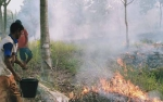 Transisi Darurat Karhutla, Beberapa Titik di Palangka Raya Kembali Berkobar