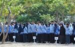 Hari ini BKPSDM Seruyan Ambil Kuota CPNS ke Provinsi
