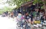 Burung Cucak Hijau dan Beo Dilarang Dijual Pedagang Pasrah