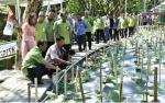 Petrokimia Manfaatkan Air Wudu Masjid untuk Budi Daya Sayur dan Ikan